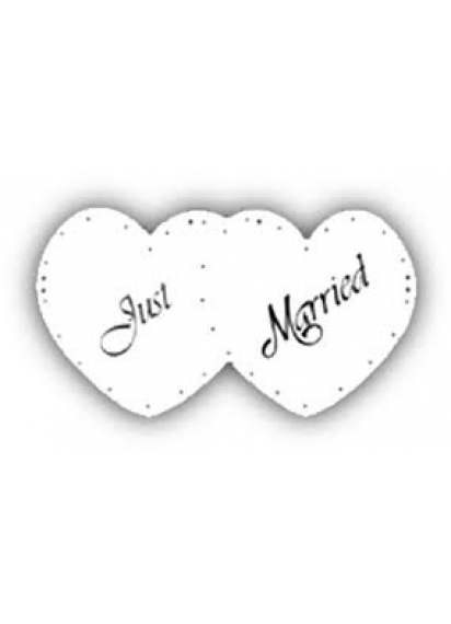 Just Married Signs