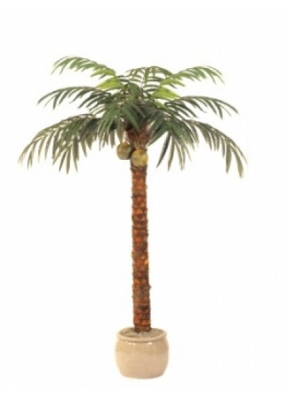 Palm Trees 8ft