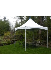 Party Tent 10' x 10'