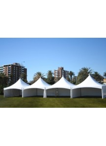 Party Tent 20' x 80'