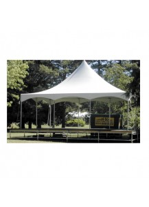 Party Tent 20' x 30'